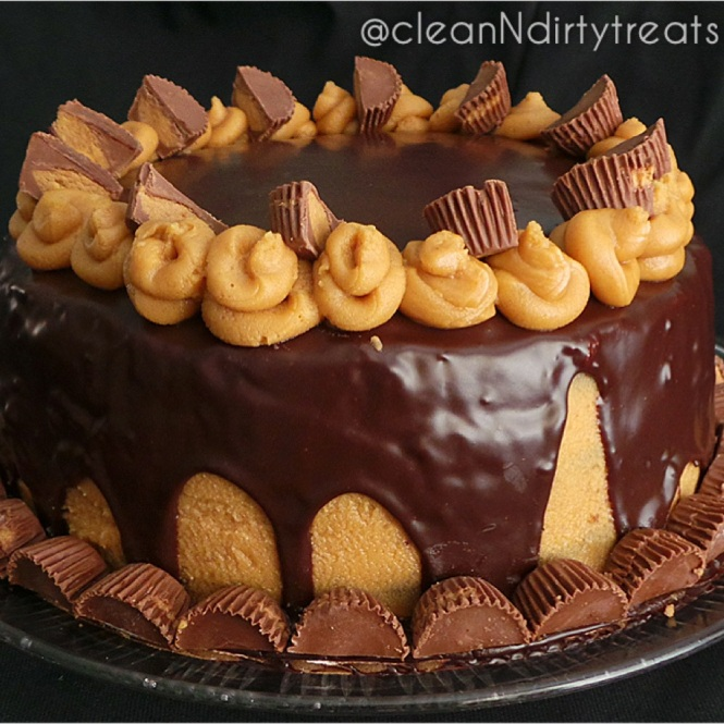 extreme chocolate peanut butter cake